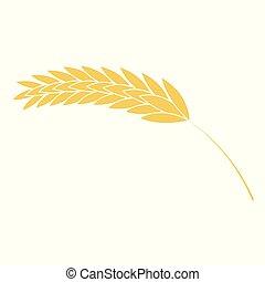 płaski, styl, pszenica, prosty, odizolowany, ilustracja, tło., wektor, biały, ucho, ikona