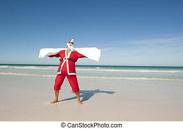 pływać, claus, plaża, boże narodzenie, święty