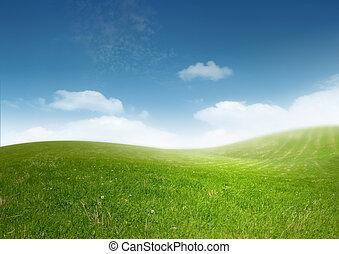 překrásný, čistit, krajina