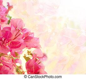 překrásný, abstraktní, květinový, grafické pozadí, s, karafiát, flowers., hraničit, design