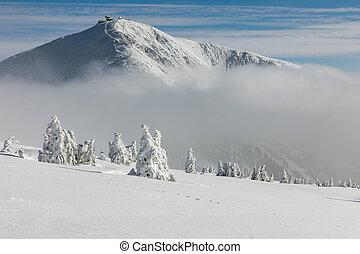překrásný, hory, obr, zima, snezka, jasný, mina, day., krkonose, krajina, hill., krkonos, fog., údolí, plný