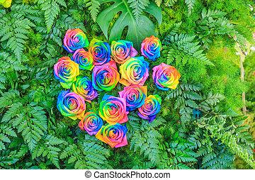překrásný, květiny