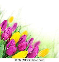 překrásný, kytice, o, flowers.