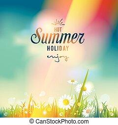 překrásný, léto, západ slunce, nebo, východ slunce