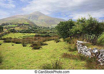 překrásný, meadows., vyvýšenina, krajina