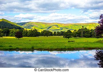 překrásný, namočit, vyvýšenina, krajina, skotský
