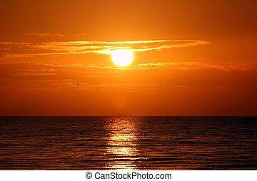 překrásný, ostrov, florida, východ slunce, sanibel
