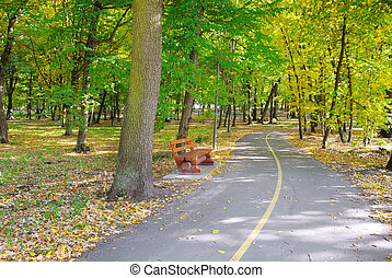 překrásný, podzim, sad, krajina