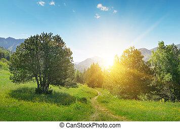 překrásný, východ slunce, od hora