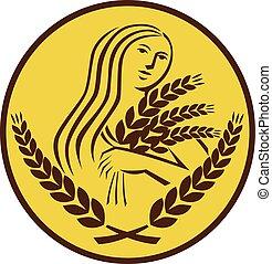pšenice, demeter, grán, za, vejčitý, sklízet