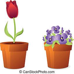 původ přivést do květu, do, hrnec