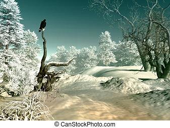 país de las maravillas del invierno, escena, 3d, cg