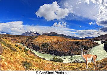 país de los sueños, patagonia