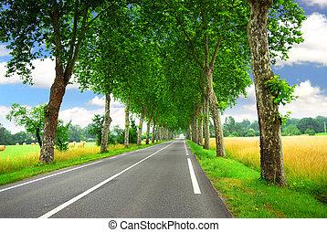 país, francês, estrada