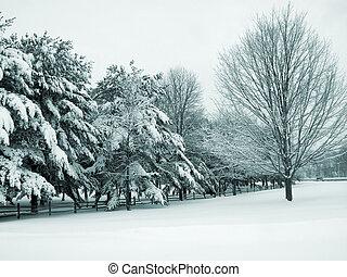 país, nieve