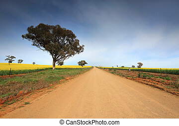país, terra cultivada, através, estrada, rural