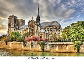 paříž, notre, k, dáma, katedrála