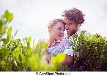 paar, büsche, lächeln, umarmen, draußen