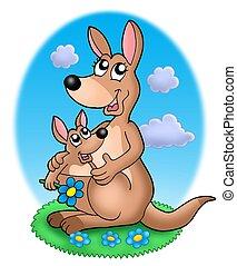 paar, gras, kangoeroes