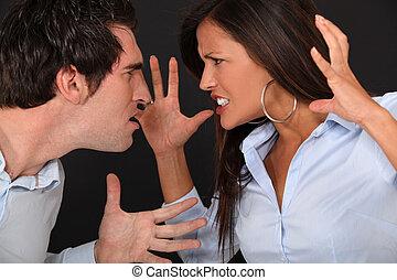 paar, haben, argument