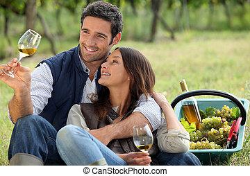 paar, het genieten van, picknick