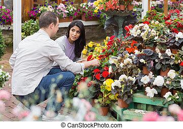 paar, kopen, het bespreken, bloemen