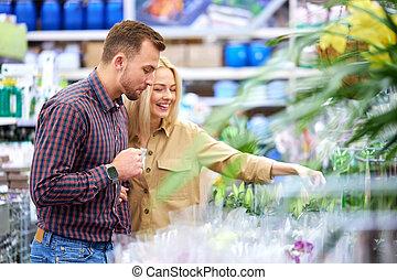 paar, kopen, planten, potten