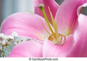 paar, lily., ringen, stamper, trouwfeest