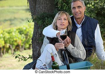 paar, op, een, romantische, picknick, in, een, wijngaard