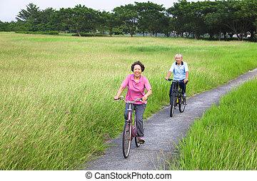 paar, ouwetjes, biking, vrolijke , park, aziaat