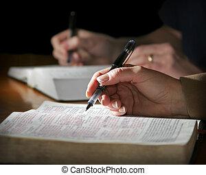 paar, studies, de, bijbel