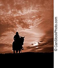 paard en passagier