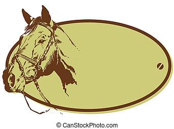 paarde, club, stijl, illustratie, paardrijden, spandoek