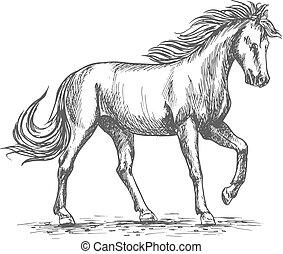 paarde, equine, schets, vrijstaand, ontwerp, paddock