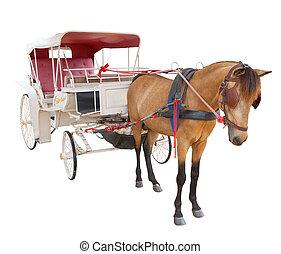 paarde, gebruiken, vrijstaand, verhaal, wagen, achtergrond, elfje, witte , cabine