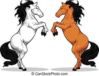 paarde, hengst, of, prancing