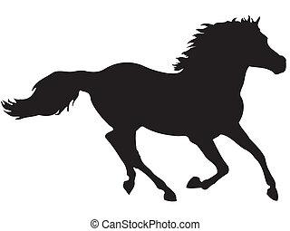 paarde, rennende