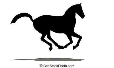 paarde, silhouette