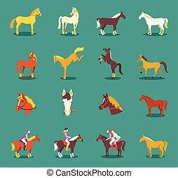 paarden, blauwe , groep, vrijstaand, achtergrond.