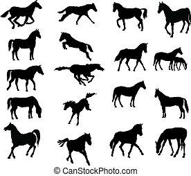 paarden, gevarieerd, vector-silhouettes