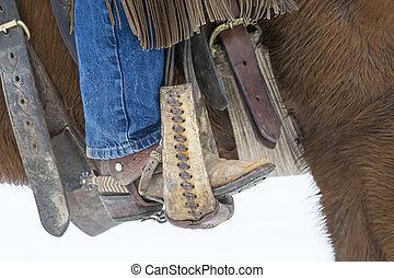 paarden, herding, sneeuw, cowboy