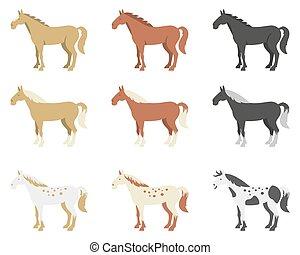 paarden kleuren, anders, set, fokken