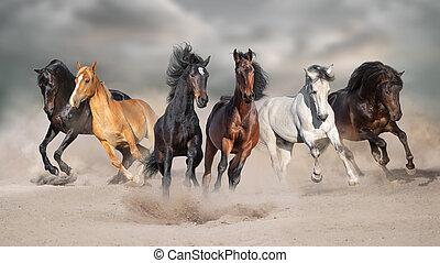 paarden, uitvoeren, in, zand