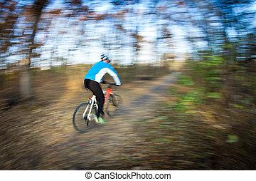 paardrijden, dag, autumn/fall, fiets park, stad, mooi en gracieus