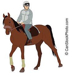 paardrijden, paarde, man
