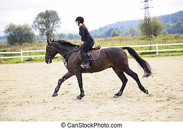 paardrijden, paarde, vrouw
