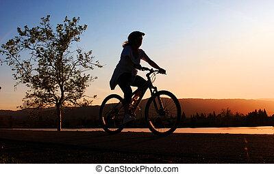 paardrijden, vrouw, fiets
