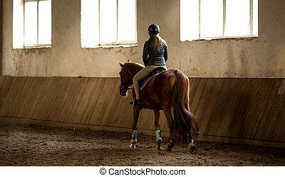 paardrijden, vrouw, manege, horseback