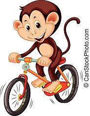 paardrijden, weinig; niet zo(veel), fiets, aap