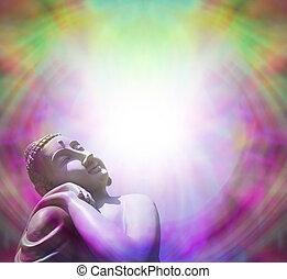 pacífico, buddha, basking, en, luz